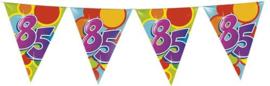 Vlaggenlijn ballonnen 85 (10 meter)