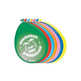 Ballonnen Pensioen (30cm, 8 stuks)