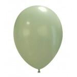 """Pastel Appel Groen 10 stuks 11""""/29 cm (PT90/10)"""