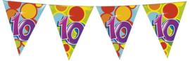 Vlaggenlijn ballonnen 10 (405510H)