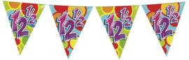 Vlaggenlijn ballonnen 12,5 (405544H)