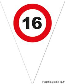 Vlaggenlijn 16 Verkeersbord - 5 meter (84482E)