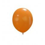 "Pastel Oranje 10 stuks 5"" (PT5/05)"