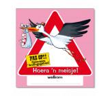 Huldeschild verkeersbord 'Hoera, een meisje!'