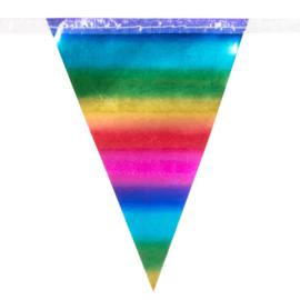 Vlaggenlijn Regenboog  metallic 10 meter (74738B)