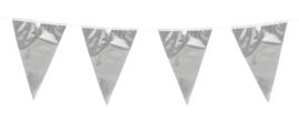 Vlaggenlijn Zilver 10 meter (74765B)