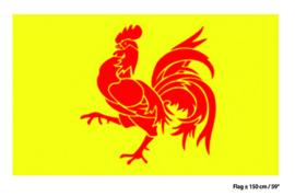 Vlag Wallonië - 90 x 150 cm (62433E)