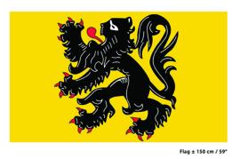 Vlag Vlaanderen - 90 x 150 cm (62253E)