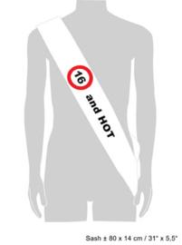 Sjerp 16 jaar Verkeersbord (84493E)
