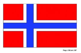 Vlag Noorwegen - 90 x 150 cm (62459E)