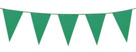 Vlaggenlijn Groen 10 meter (74754B)