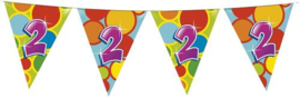 Vlaggenlijn ballonnen 2 (405502H)