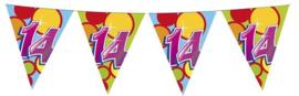 Vlaggenlijn ballonnen 14 (405548H)