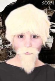 Snor + baard professor Blond (20071P)