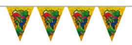 Vlaggenlijn Dinosaurus - 6 meter (61857F)