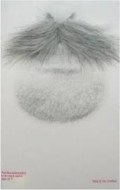 Snor Bob Grijs (20086P)