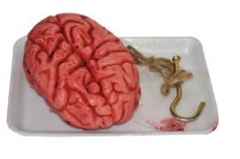 Bloederige hersenen aan haak (74504E)