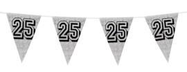 Vlaggenlijn holografisch zilver 25  (8 meter)(30026B)