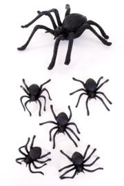 Spinnen 5 stuks - 8 cm (85330P)