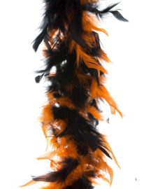 Boa Oranje/Zwart 45 gram / 180 cm (53532E)