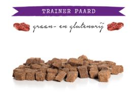 Kivo Trainer Paard - 200 gram | Hond (AH)