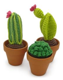 Haakpakket | Hardicraft | Cactussen