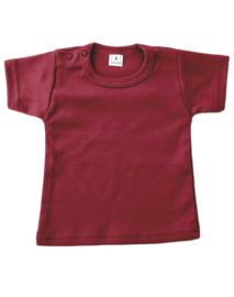 Shirt - Rawr!