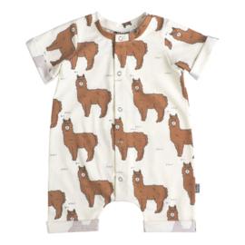 NEWBORN - Boxpakje - Baby summer Rib Alpaca