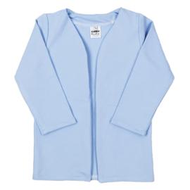 Lang Vest | Powder Blue
