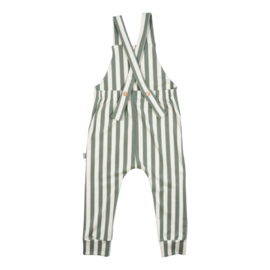 Suspender pants/tuinbroek - cream/green