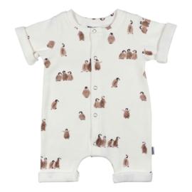 NEWBORN - Boxpakje - Baby summer Jumpsuit Rib Penguin