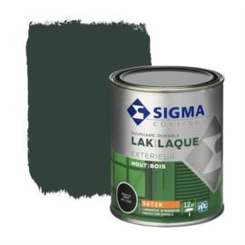 Sigma Exterieur Lak Zijdeglans Grachtengroen 750 ml