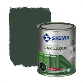 Sigma Exterieur Lak Hoogglans Ral 6009 750 ml