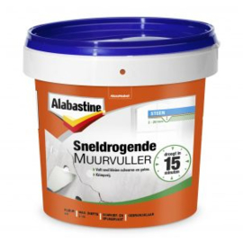 Alabastine Sneldrogende Muurvuller Wit 1 kg