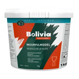 Bolivia Muurvulmiddel 1 Kilo emmer