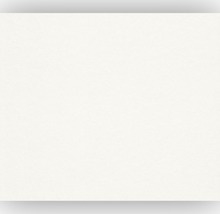 Rasch Profivlies - Renovlies 116601 50 x 1 meter 150 gram