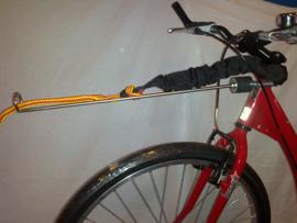 Scooter/Bike Leine 1 Hund mit Dämpfung