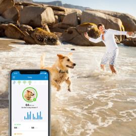 Tractive GPS DOG 4 - GPS-tracker voor honden en activiteitenmonitor