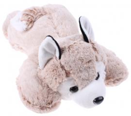 Eddy Toys knuffel husky