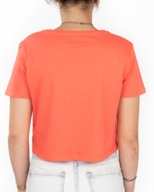 Cropped Snikheet T-Shirt Coral
