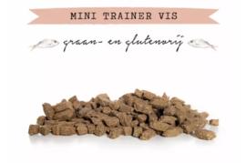 Kivo Mini Trainer Vis - 200 gram | Hond (AW)