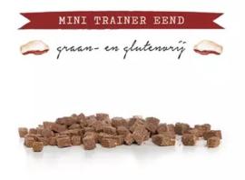 Kivo Mini Trainer Eend - 200 gram | Hond (AJ)