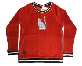br@nd  sweater velours-110/116