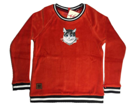 br@nd  sweater velours poes-98/104