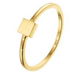 14 K Gouden Ring Vierkant 4 mm  - Mt 17