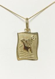 14 K Gouden Plaat Hangertje - Waterman / 2,5 cm