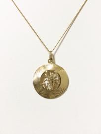 14 K Gouden Hanger Sterrenbeeld Schorpioen - 2 cm