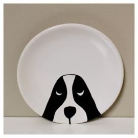 Bord Hond