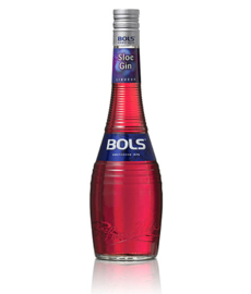 Bols Sloe Gin 0.7L