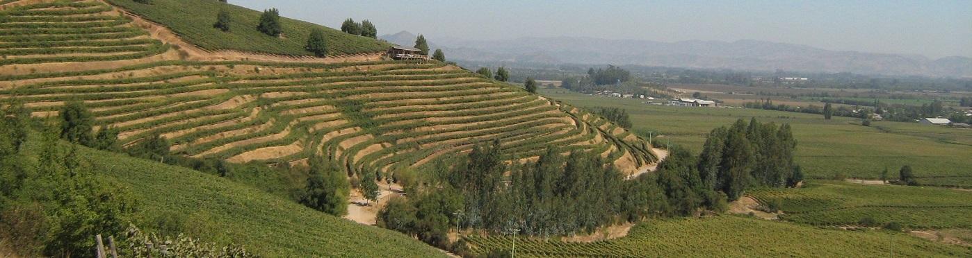Wijngebieden met prachtig uitzicht.
